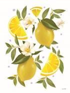 Citrus Lemon Botanical