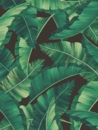Tropical Leaves II