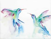 Hummingbirds I