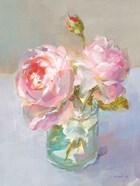 Sweet Roses I