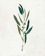 Botanical Study I Greenery