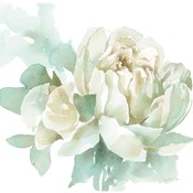 Poetic Blooming I