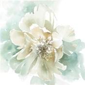 Poetic Blooming II