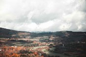 Autumn Hills II