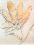 Flower Loops  II