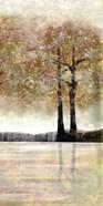 Serene Forest 2