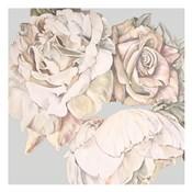 Soft Rose Bunch