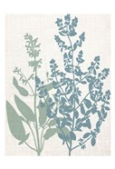 Linen Herbs 2