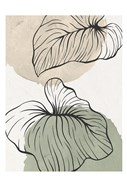 Palm Organics 2