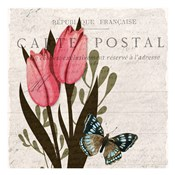Tulip Postcard 1
