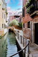 Venetian Canale #8