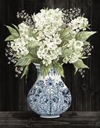 Hydrangea Elegance