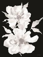 Black & White Flowers I