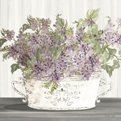 Lilac Galvanized Pot