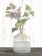 Lilacs IV