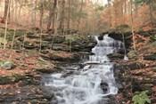 Waterfall Steps at Pigeon Run