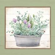 Pot of Herbs I