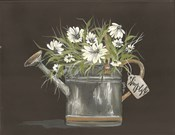 Watering Can Daisy