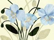 Blue Poppies II