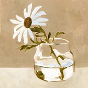 Solitary Daisy I