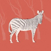 Plains Zebra I
