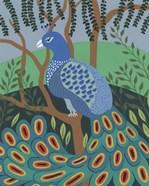 Dandy Peacock II