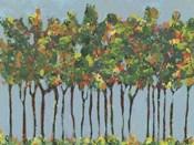 Sunset Trees I