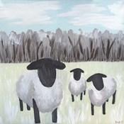 Paint Splotch Sheep
