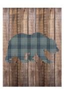 Bear Woods