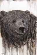 Giant Kodiak