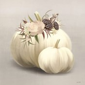 Boho Pumpkins