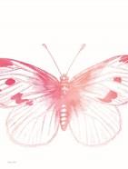 Pink Butterfly III