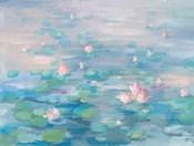 Sunrise Waterlilies