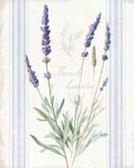 Floursack Lavender I