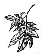 Ink Leaves
