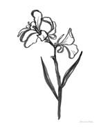 Ink Flower II