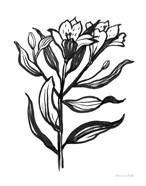 Ink Flower I