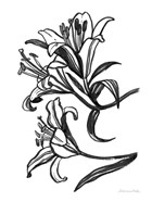 Ink Lilies II