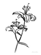 Ink Lilies I