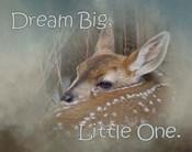 Dream Big Dear