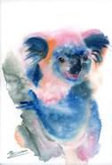Blue Koala