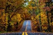 Woodland Road I