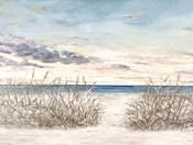 Windy Beaches