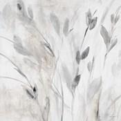 Gray Misty Leaves Square I