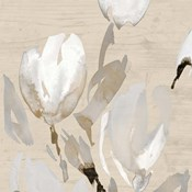 Neutral Tulips I