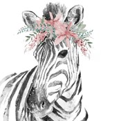 Water Zebra with Floral Crown Square
