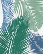 Baru Palm Collage I