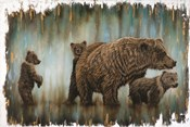 Mama Bear's Protection