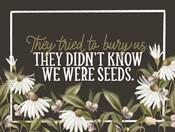 We Were Seeds