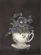 Tea Cup Violets